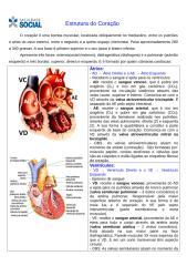 Estrutura do Coração.doc