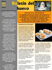huevo elaborado en microondas.pdf